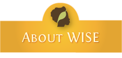 about_wise